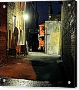 No Alley Cats Tonight Acrylic Print by Jan Amiss Photography