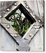 Now You Know Acrylic Print by Dean Harte