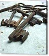 Old Keys Acrylic Print by Bernard Jaubert