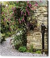 Old Water Pump, Ram House Garden, Co Acrylic Print by The Irish Image Collection