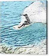 On The Lip Acrylic Print by Tilly Williams