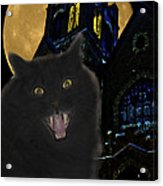 One Dark Halloween Night Acrylic Print by Shane Bechler
