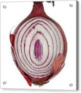 Onion Acrylic Print by Frank Tschakert