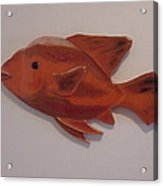 Orange Fish Acrylic Print by Val Oconnor