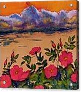 Orange Sun Over Wild Roses Acrylic Print by Carolyn Doe