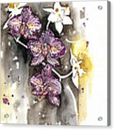 Orchid 13 Elena Yakubovich Acrylic Print by Elena Yakubovich