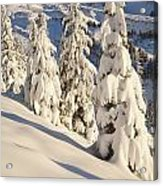 Oregon, United States Of America Snow Acrylic Print by Craig Tuttle