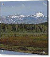 Oxbow Bend Acrylic Print by Charles Warren