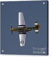 P-51 Gunfighter Acrylic Print by Tim Mulina