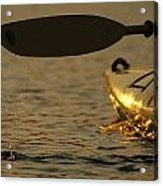 Paddling A Kayak Over Walden Pond Acrylic Print by Tim Laman