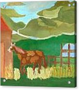 Paint Pony At Red Schoolhouse Acrylic Print by Shannon SmithCumiford