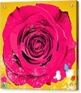 Painting Of Single Rose Acrylic Print by Setsiri Silapasuwanchai