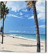 Palm Trees On Ocean Park Beach Acrylic Print by George Oze