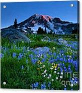 Paradise Garden Dawning Acrylic Print by Mike  Dawson