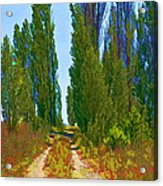Paradise Road Acrylic Print by Randall Nyhof