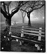 Park Benches Acrylic Print by Gary Heller