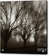 Park In Fog Acrylic Print by Susan Isakson