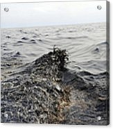 Part Of An Oil Slick In The Gulf Acrylic Print by Stocktrek Images