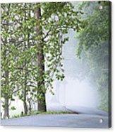 Path Into The Fog Acrylic Print by Andrew Soundarajan