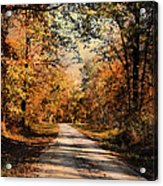 Path To Nowhere Acrylic Print by Jai Johnson