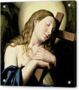 Penitent Magdalene Acrylic Print by Il Sassoferrato
