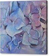 Petals Acrylic Print by Patsy Sharpe