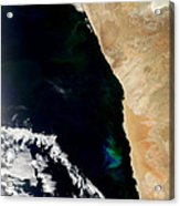 Phytoplankton Bloom Off Nambia Acrylic Print by Nasa