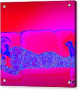 Pink And Blue Daydream Acrylic Print by Charles Benavidez