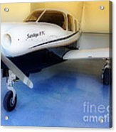 Piper Saratoga Acrylic Print by Cheryl Young