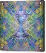 Pivortexspheres On Chalicell Garden Tapestry Ivb Acrylic Print by Christopher Pringer
