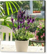 Plastic Lavender Flowers  Acrylic Print by Nawarat Namphon