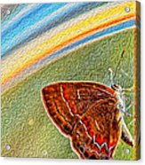 Playroom Butterfly Acrylic Print by Bill Tiepelman
