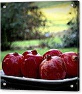 Pomegranates On White Platter 3 Acrylic Print by Tanya  Searcy