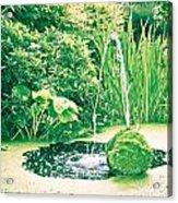 Pond Acrylic Print by Tom Gowanlock
