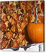Pumpkin On White Fence Post Acrylic Print by Garry Gay