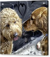 Puppy Love Acrylic Print by Madeline Ellis