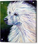 Pure Poetry - Chinese Crested Acrylic Print by Lyn Cook
