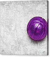 Purple Ball Cat Toy Acrylic Print by Andee Design