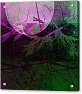 Purple Moon Acrylic Print by Ann Powell