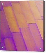 Purple Orange I Acrylic Print by Chris Dutton