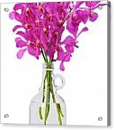 Purple Orchid In Bottle Acrylic Print by Atiketta Sangasaeng