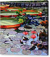 Quiet Moments Acrylic Print by John Lautermilch