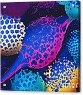 Radiolarians Acrylic Print by Omikron