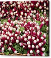Radishes In A Basket Acrylic Print by Jane Rix