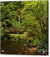 Rain Forest Bridge Acrylic Print by Adam Jewell