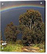 Rainbow Acrylic Print by Photostock-israel