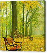 Red Benches In The Park Acrylic Print by Jaroslaw Grudzinski