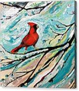 Red Fury Acrylic Print by Cynara Shelton