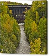 Redridge Steel Dam 7844 Acrylic Print by Michael Peychich