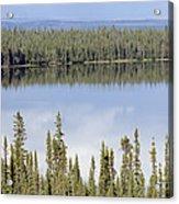 Reflection In Willow Lake Near Copper Acrylic Print by Rich Reid